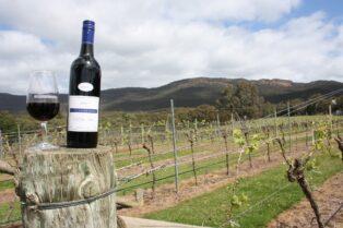 オーストラリアワイン③