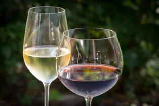 ワイン会でテイスティング⑦