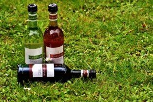 ワイン産地④