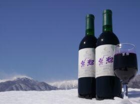 信州ワイン 紫輝